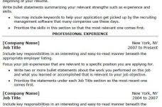 Resume Templates Copy And Paste Incredible Decoration It Professional Resume Examples Interesting