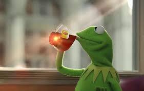 Lizard Meme - your guide to the culturally appropriative tea lizard meme dazed