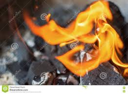 coal and fire burning fire bright flames charcoal briquettes