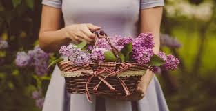 flower deliver flower delivery callingwood flowers