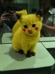 Cat Costumes Halloween Grumpy Link Pet Costumes Pikachu Sad
