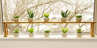 Window Sill Garden Inspiration Window Sill Plants Inspiration With Window