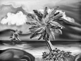 free images beach sea nature black and white sunset leaf