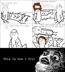 Troll Meme Comics - rage comics momma bird rage funny rage comics pinterest