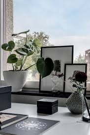 home design 09 soothing indoor desk plant with gorgeous decorative