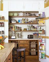 pantry ideas for kitchens 47 cool kitchen pantry design ideas shelterness