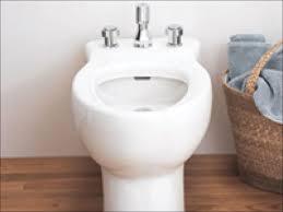 Luxe Bidet Mb110 Luxe Bidet My Review Of Luxe Bidet Neo 185 Bidet Toilet Bidet