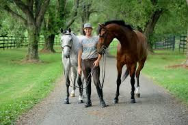 clover creek animal health veterinarian in salem va usa meet