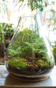 making a terrarium containers with easy my journey