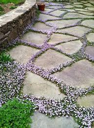the 25 best english cottage gardens ideas on pinterest garden