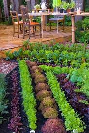 How To Design A Flower Bed How To Design A Herb Garden Yourself Gardenoholic