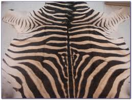 Genuine Zebra Rug Rugs Zebra Skin Rug Authentic Zebra Hide Rug Fake Zebra Rug