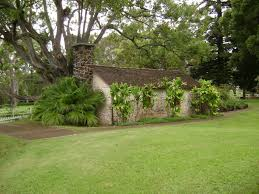 free images tree grass lawn house flower home backyard