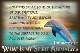 quotes about beauty coming from within dolphin quotes u0026 sayings animal quotes u0026 sayings