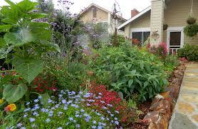 beautiful home gardens gardenenvy this garden is for the birds