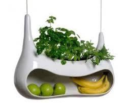 kitchen fruit basket foter