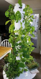 How To Plant Vertical Garden - how to plant a vertical tower garden