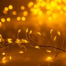 novelty lights gold led garland lights gold wire