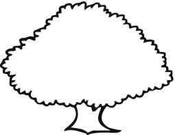 Oak Tree Coloring Book Tree Coloring Pages