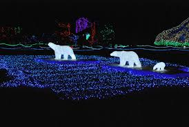 Zoo Lights Seattle by Pma Events