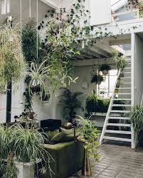 home interior plants all of the plants h o m e s w e e t h o m e