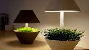 Indoor Gardening by Lightening Tips For Indoor Gardening Natural Light Filters Youtube