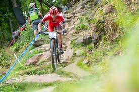 jeep mountain bike mountainbike hardtail usa focus bikes