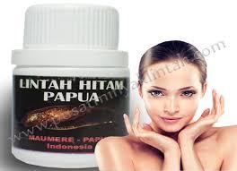 manfaat minyak lintah untuk kesehatan kulit kecantikan minyak