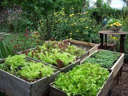 Edible Garden Ideas Edible Landscapes Think Blue Marin