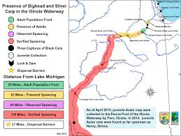 Chicago Il Map Updated Map On Location Of Bighead And Silver Carps In The