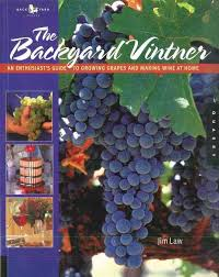 techniques in home winemaking the best 25 wine from grapes ideas on wine about