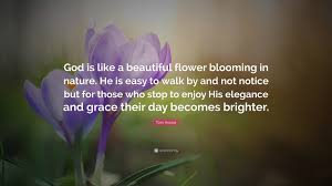 quotes elegance beauty tom krause quote u201cgod is like a beautiful flower blooming in