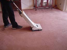 how to vacuum carpet pin by fair dinkum carpet cleaning pest control on carpet cleaner