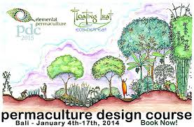 Bali Permaculture Design Course And Retreat - Backyard permaculture design