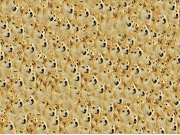 Doge Meme Tumblr - my 1600x1200 background title said doge 102295023 added by