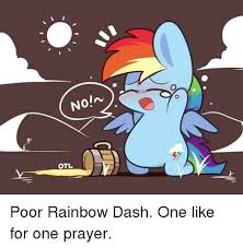 Rainbow Dash Meme - 25 best memes about rainbow dash meme rainbow dash memes