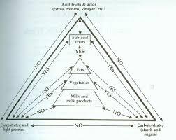 trophology chart