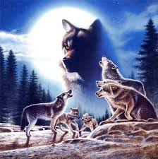 leanin tree christmas cards gallery for u003e howling wolf pack