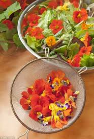 edible flowers for sale petals and edible flowers found to high levels of health