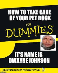 Pet Rock Meme - how to take care of your pet rock it s name is dwayne johnson meme