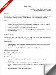 Programming Resume Examples by Software Developer Resume Sample Objective U0026 Skills Computer