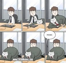Meme Business Cat - business cat new trending popular memes 10 18 2014 clean memes