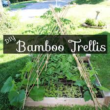 build a garden trellis diy bamboo garden trellis this pug life best solutions of diy