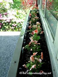 Flower Boxes That Thrive In by How To Plant A Window Box Garden Tutorial U0026 Planting Tips An