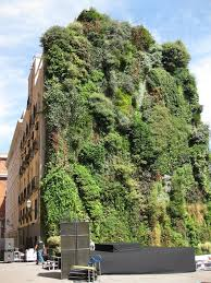 How To Build A Vertical Wall Garden by Patrick Blanc U0027s Vertical Garden In Madrid Buildipedia