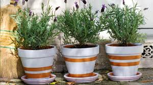 Painting Garden Pots Ideas Homelife How To Paint A Terracotta Pot