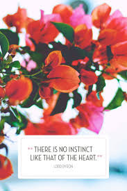 Valentines Day Quotes by 193 Best Valentine U0027s Day Images On Pinterest Celebrations