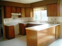 Spruce Up Kitchen Cabinets Oak Kitchen Cabinets Spruce Up Ideas With Elegance And Versatility