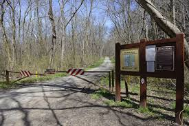 No cars allowed on illinois forest road during annual snake