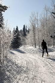 happy jack cross country ski trails u2013 laramie wyoming public media
